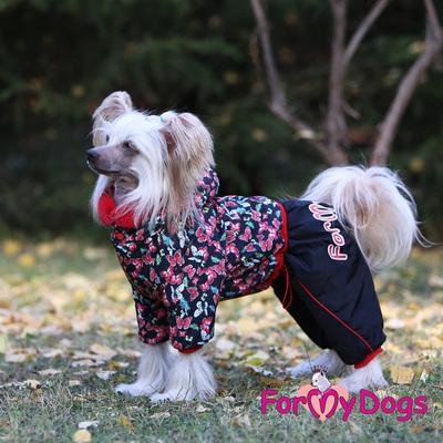 """ForMyDogs Комбинезон для собак """"Бабочки"""", черно/красный, размер №14, №20 модель для девочек (фото, вид 2)"""