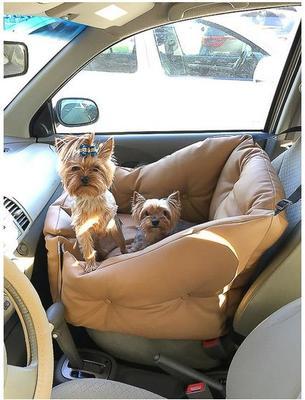 ДогСмит Автокресло для собак, 50х50х50/25см (фото, вид 10)