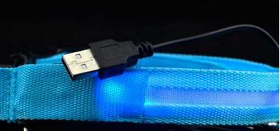 АНТ Ошейник светящийся на светодиодах Pet Collar с USB, 3 размера (фото, вид 1)