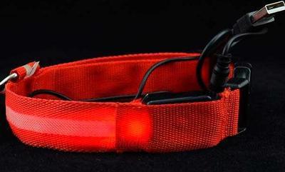 АНТ Ошейник светящийся на светодиодах Pet Collar с USB, 3 размера (фото, вид 2)