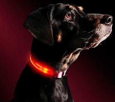 АНТ Ошейник светящийся на светодиодах Pet Collar с USB, 3 размера (фото, вид 5)