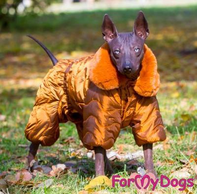 ForMyDogs Комбинезон для собак коричневый, размер 14, 16, для мальчиков (фото, вид 1)