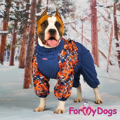ForMyDogs Комбинезон для крупных собак сине/оранжевый, размер С2, модель для мальчиков (фото, вид 1)