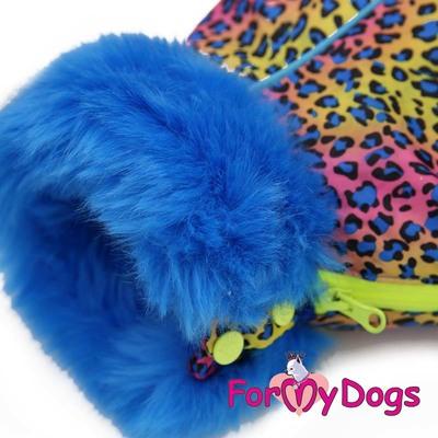 """ForMyDogs Комбинезон для такс голубой """"ЛЕО"""", размер ТМ1, ТС1, модель для мальчиков (фото, вид 2)"""