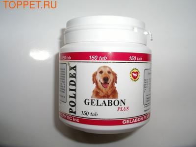 Polidex Gelabon plus(Гелабон плюс) (фото)