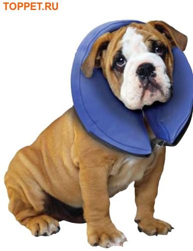АНТ Елизаветинские воротники для собак и кошек надувные S, М, L, XL (фото)