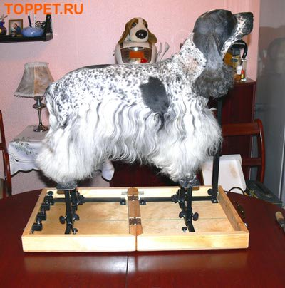 """Тренажер """"HAPPY LEGS"""" для собак (фото)"""