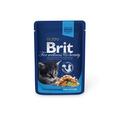 Brit Care Premium пауч для котят Курица 100г х 24шт