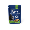 Brit Care Premium пауч для стерилизованных кошек Курица 100г х 24шт