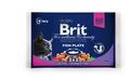 Brit Care Premium Набор паучей для кошек Рыбная тарелка 4*100г