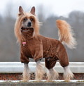 ForMyDogs Комбинезон для собак из мягкого искусственного меха, размер 16, 20, модель для мальчиков