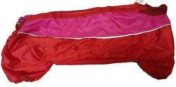 Бобровый дворик Дождевик для большой таксы красный, спина 43см, модель для девочек