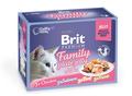 Brit Care Набор паучей Премиум для кошек в желе Семейная тарелка 12*85г