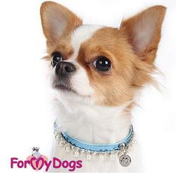 ForMyDogs Ошейник для собак голубой с жемчугом и со стразами 1х26см