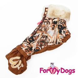 """ForMyDogs Теплый комбинезон для такс """"Тигры"""", коричневый, модель для мальчиков, размер ТМ1"""
