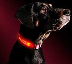 АНТ Ошейник Pet Collar светящийся на светодиодах, 3 размера