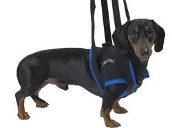 Kruuse Шлейка для травмированных собак Walkabout harness на передние конечности, размер S, M, M-L, L, XL