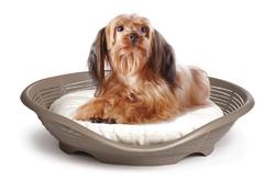 BAMA PET Лежанка с подушкой PASHA 48х46х11h см