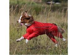 Osso Fashion Дождевик для крупных собак, модель для девочки, красный, спина 70см, грудь 74-104см