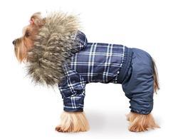 ZooTrend Комбинезон для собак Полярник, синяя шотландка, размер М, L