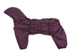 ZooPrestige Комбинезон утепленный Дутик, фиолетовый, размер 2XL, синтепон, спина 41-44см