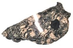 SportDog Куртка-попона на флисе для собак, камуфляж коричневый/ пиксель, спина 55см