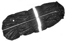 SportDog Куртка-попона на флисе для крупных собак, черная, спина 70см