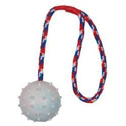 TRIXIE Игрушка для собак Мяч на веревке резиновый, 6,0см