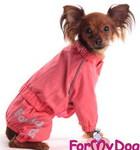 ForMyDogs Пыльник для собак, тонкий хлопок, цвет коралловый, принт и кант светоотражающий, размер 10