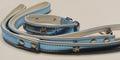 ForMyDogs Ошейник для собак размер 1,5х20-27,5,0 см, голубой, кож.зам с поводком цвет голубой, размер поводка 1,5/120см