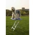 TOEX Стол для груминга выставочный алюминиевый, 60х45хН81 см