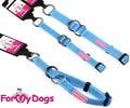 ForMyDogs Ошейник-удавка для собак, размер М (2,0см х 26-38см), цвет голубой