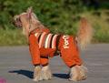 ForMyDogs Костюм для собак утепленный трикотажный с мехом, цвет коричневый, размер 10,18