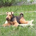 Osso Fashion Коврик охлаждающий для собак, 2 размера