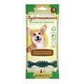 Зубочистики Косточки мятные для собак средних пород, 60 гр, 4шт в уп