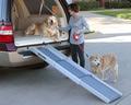 Solvit Пандус автомобильный для собак Deluxe в 3 сложения, 71см -178 см х 41 см х 12,7 см