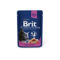 Brit Care Premium пауч для кошек Лосось и форель100г х 24шт