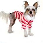 I's Pet Кофта-свитер для собак на молнии розовая размер М